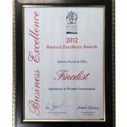 business-exellence-award-2012